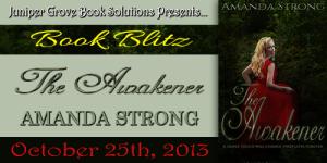 The Awakener Blitz Banner